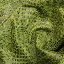 Кожа Кайман, зелёный  (ye) CH