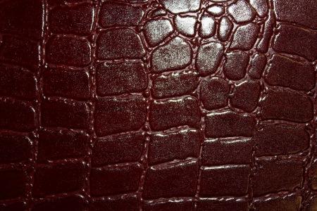 Кожа Кожа Крокодил 3 скат